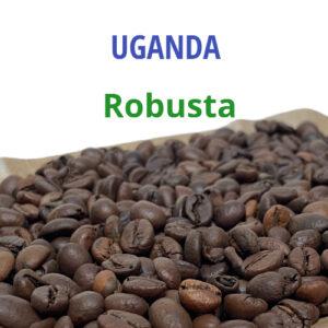 Уганда Робуста