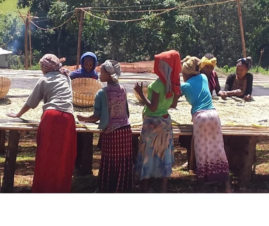 Районите за кафе в Етиопия